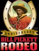 2016 BPIR logo-vert-200